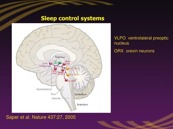 Sleep control systems