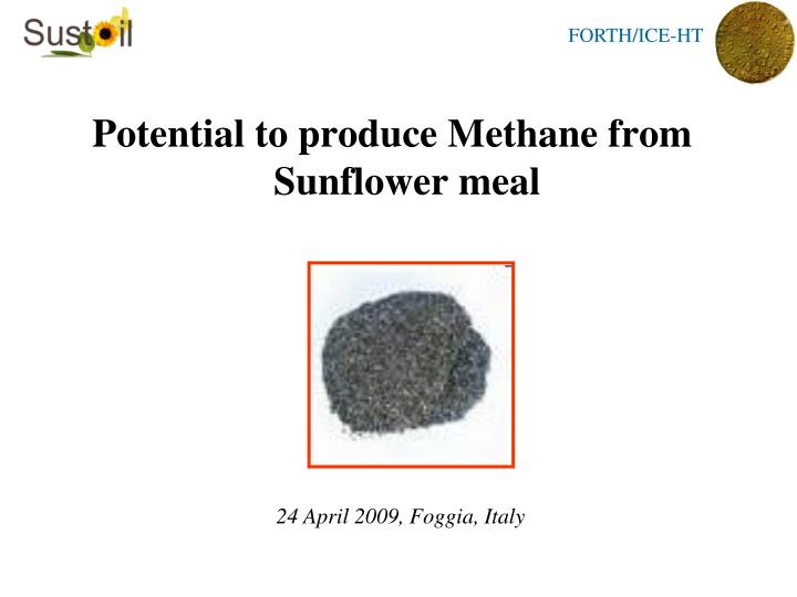 Potential to produce Methane from Sunflower meal