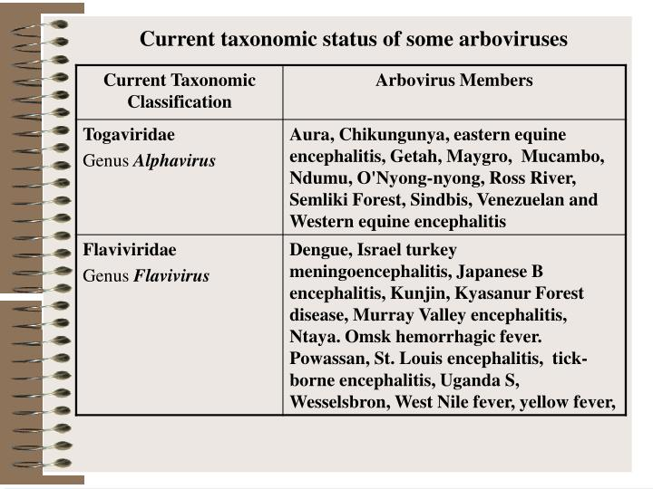 Current taxonomic status of some arboviruses