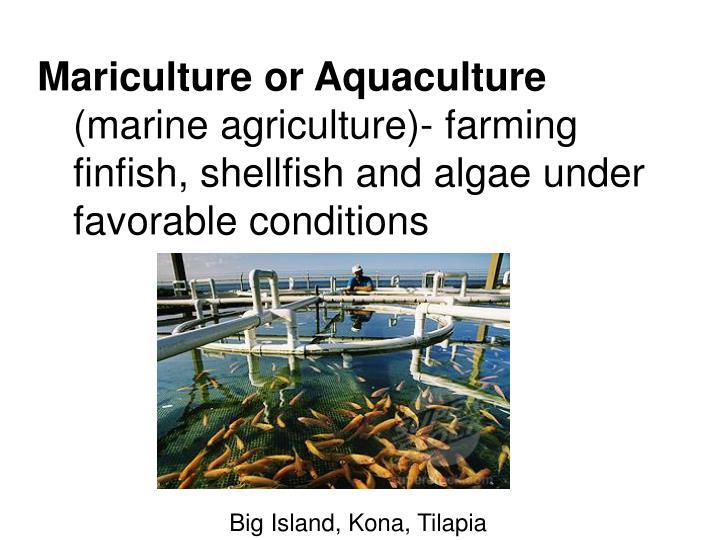 Mariculture or Aquaculture