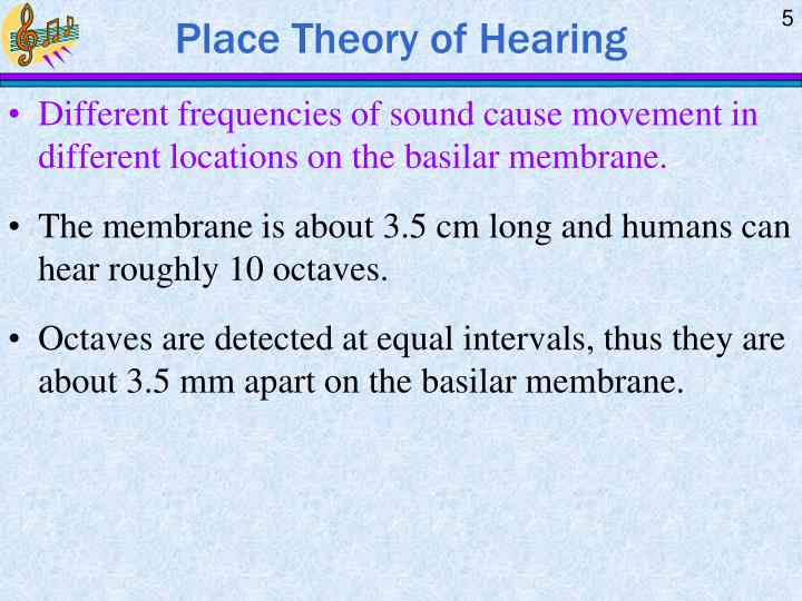 Place Theory of Hearing