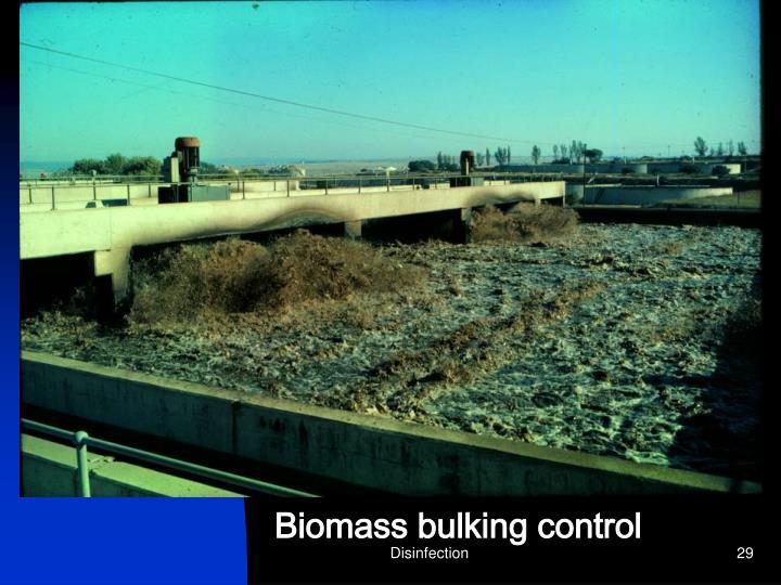 Biomass bulking control