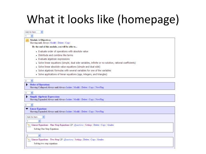 What it looks like (homepage)