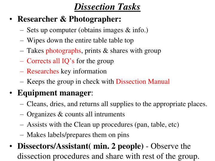 Dissection Tasks