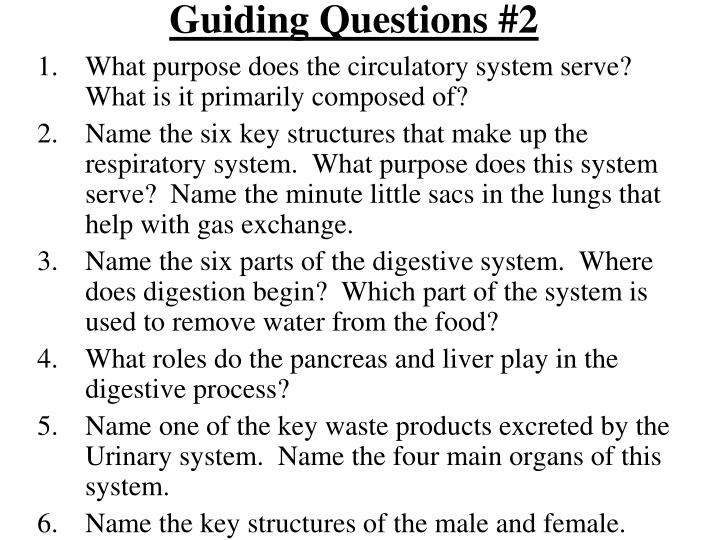 Guiding Questions #2