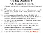guiding questions 4 ch 4 digestive system