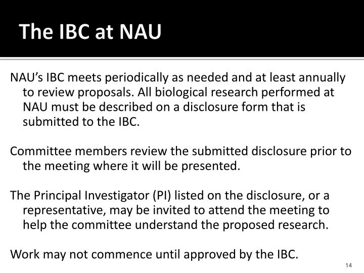 The IBC at NAU