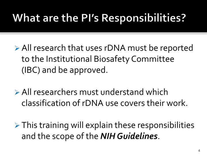What are the PI's Responsibilities?