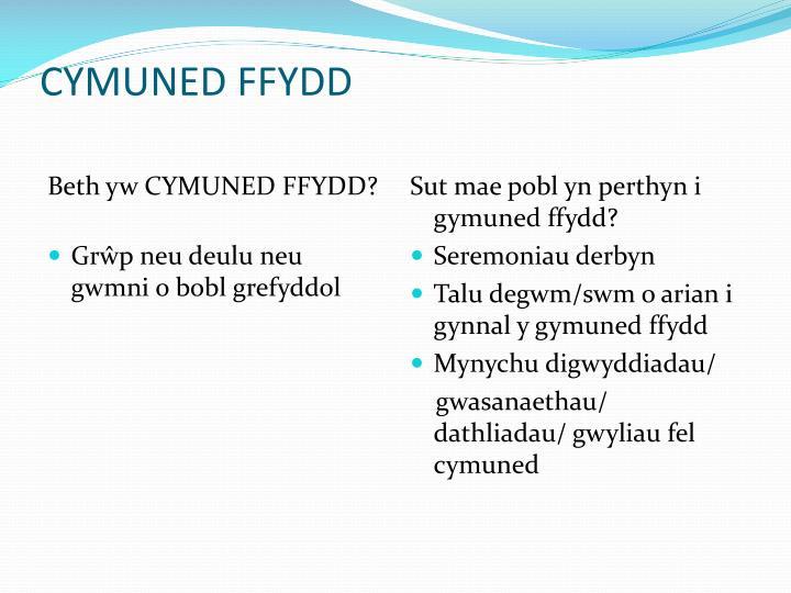 Beth yw CYMUNED FFYDD?