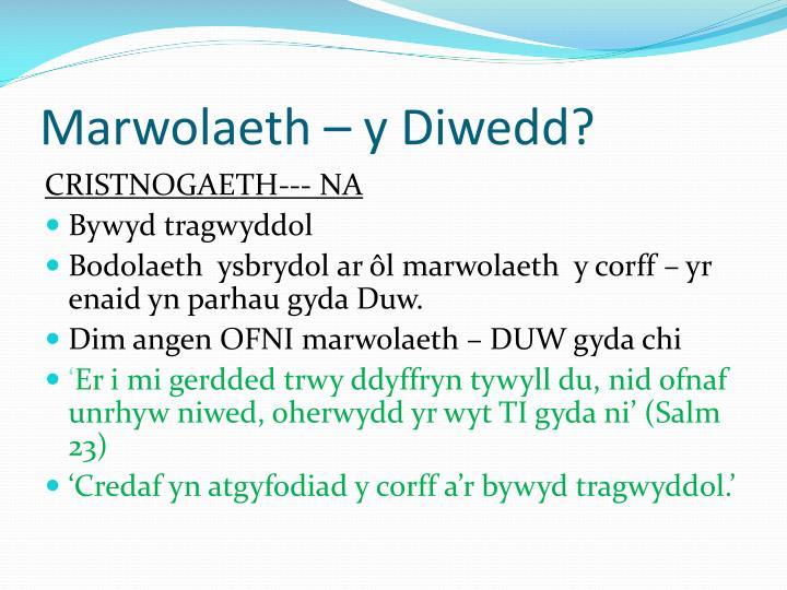 Marwolaeth – y Diwedd?