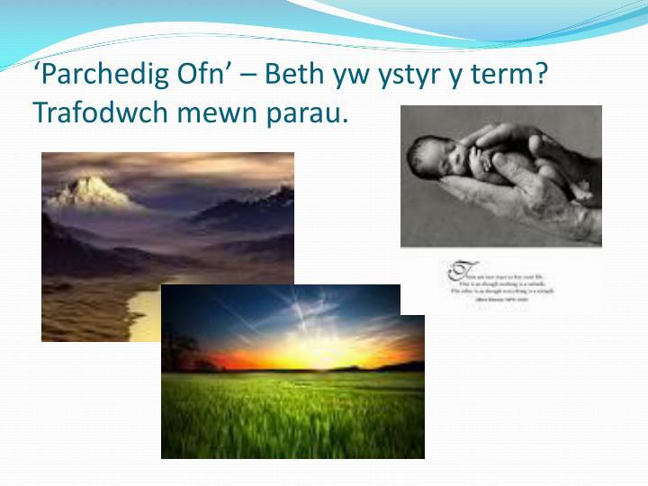 'Parchedig Ofn' – Beth yw ystyr y term? Trafodwch mewn parau.