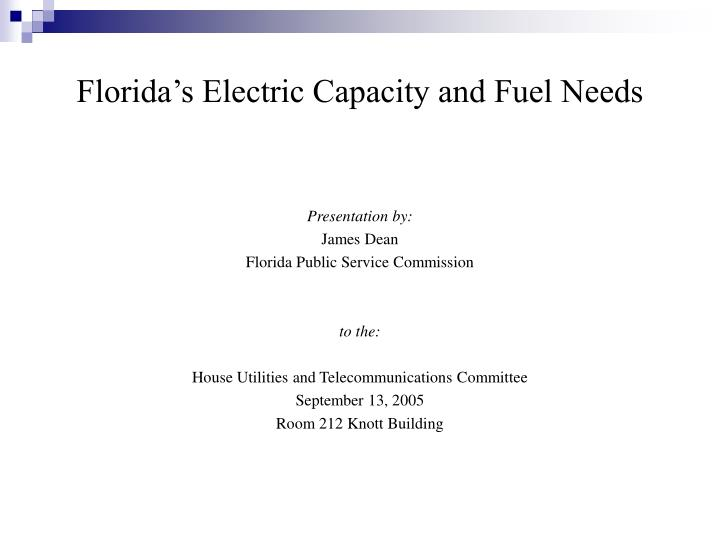 Florida s electric capacity and fuel needs