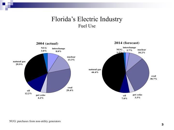Florida s electric industry fuel use