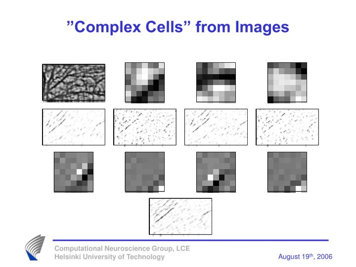 """Complex Cells"" from Images"