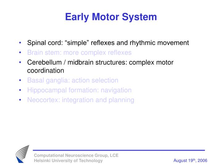 Early Motor System