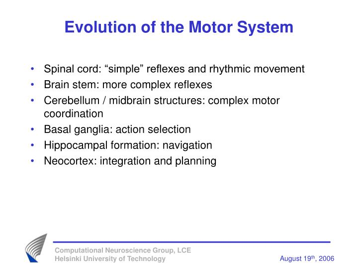Evolution of the Motor System