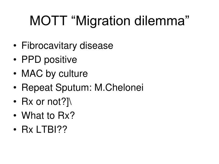 "MOTT ""Migration dilemma"""