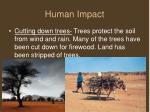 human impact1