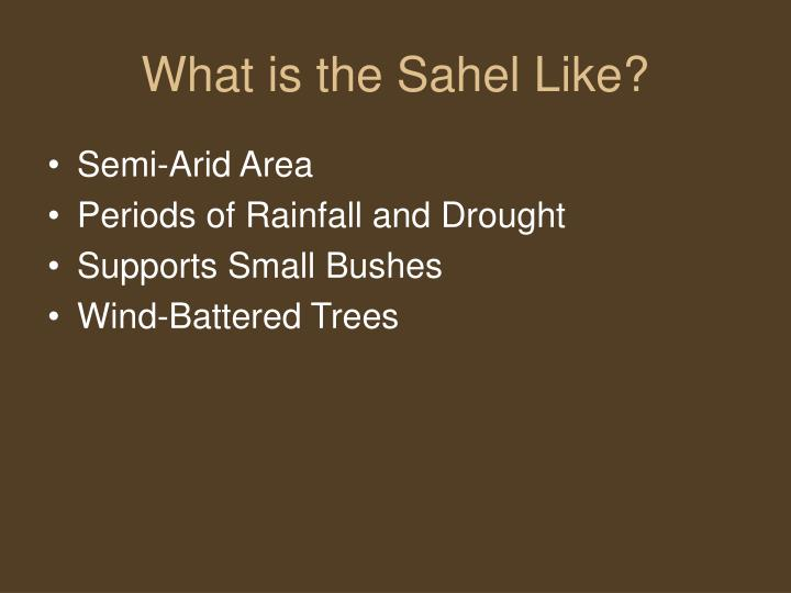 What is the Sahel Like?