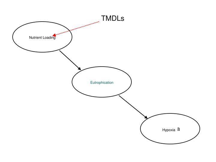 TMDLs