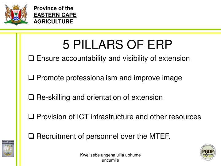 5 PILLARS OF ERP