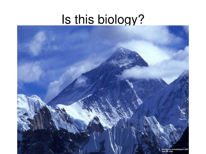 Is this biology?