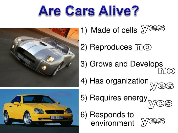 Are Cars Alive?