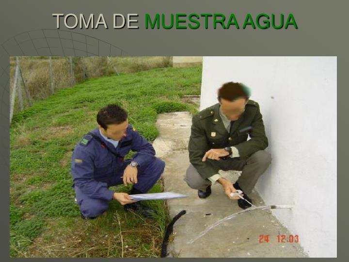 TOMA DE