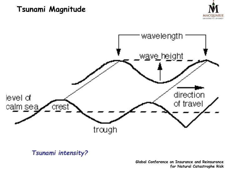Tsunami Magnitude