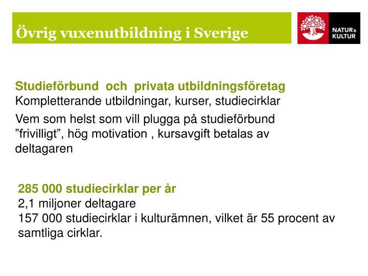 Övrig vuxenutbildning i Sverige