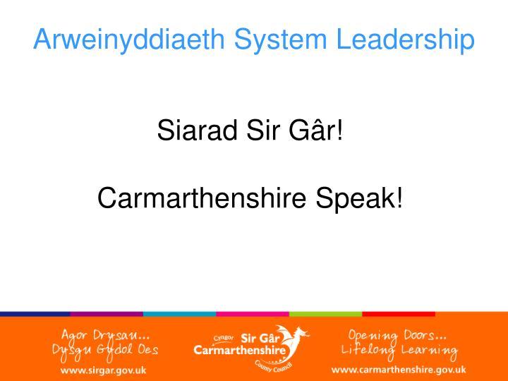 Arweinyddiaeth System Leadership