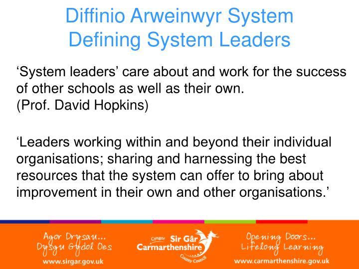 Diffinio Arweinwyr System