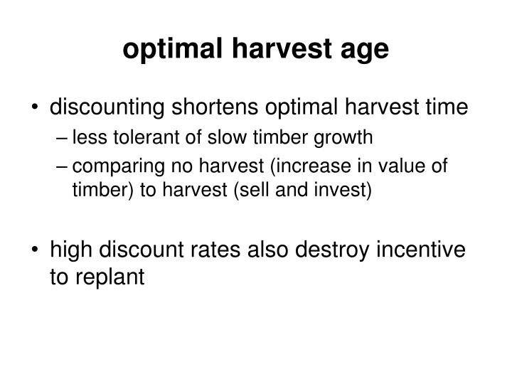 optimal harvest age