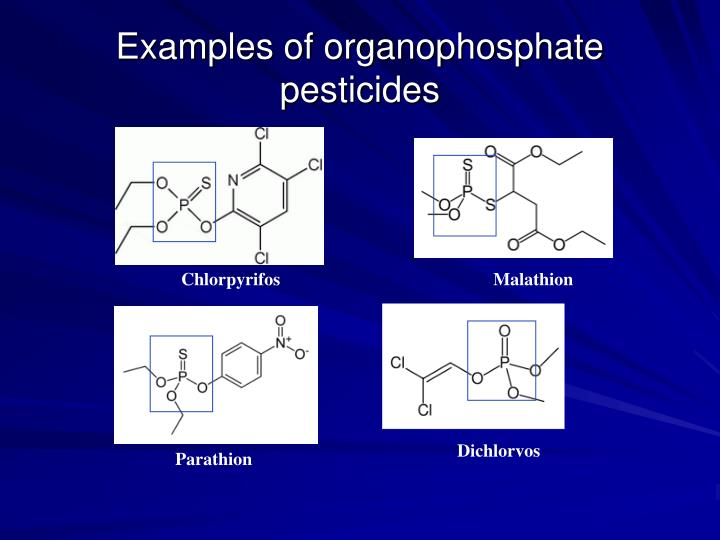 Examples of organophosphate pesticides