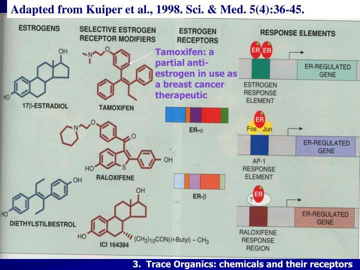 Adapted from Kuiper et al., 1998. Sci. & Med. 5(4):36-45.