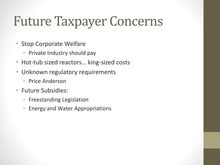 Future Taxpayer