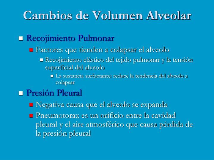 Cambios de Volumen Alveolar