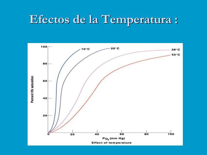 Efectos de la Temperatura :