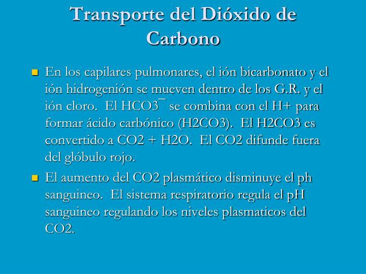 Transporte del Dióxido de Carbono