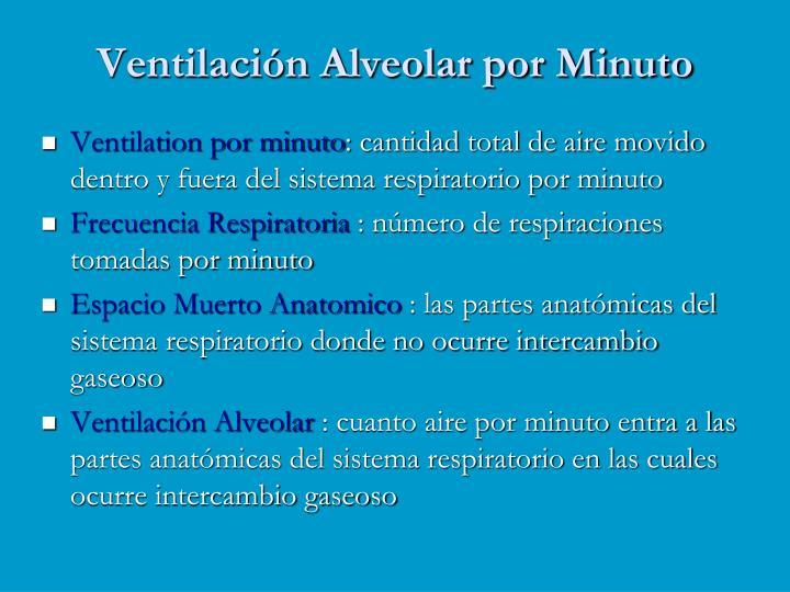 Ventilación Alveolar por Minuto
