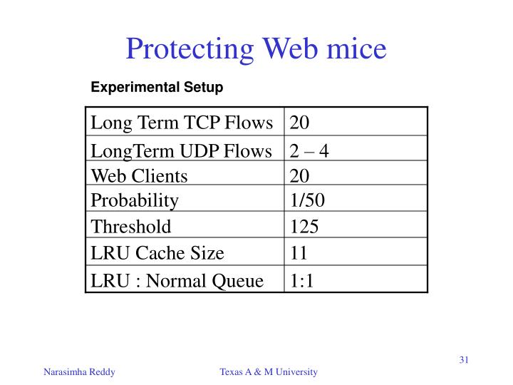 Long Term TCP Flows
