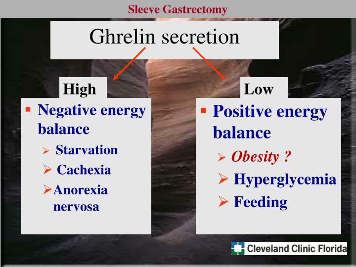 Ghrelin