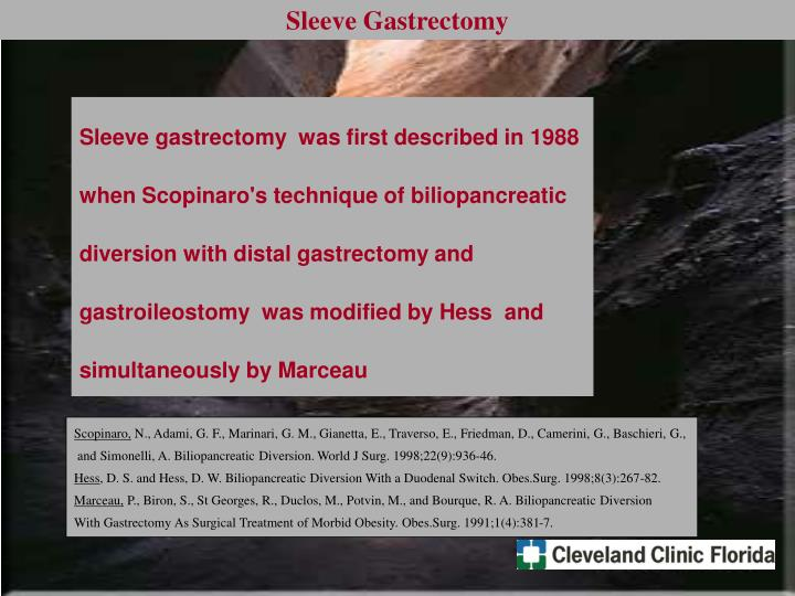 Sleeve gastrectomy  was first described in 1988