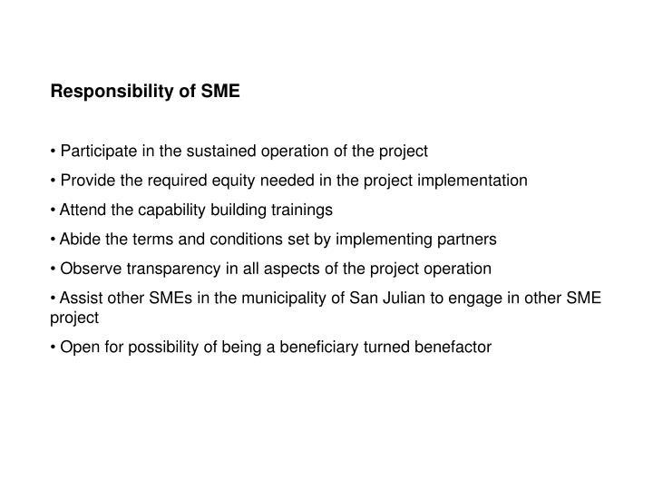Responsibility of SME