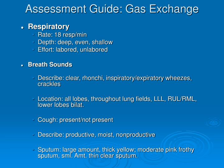 Assessment Guide: Gas Exchange