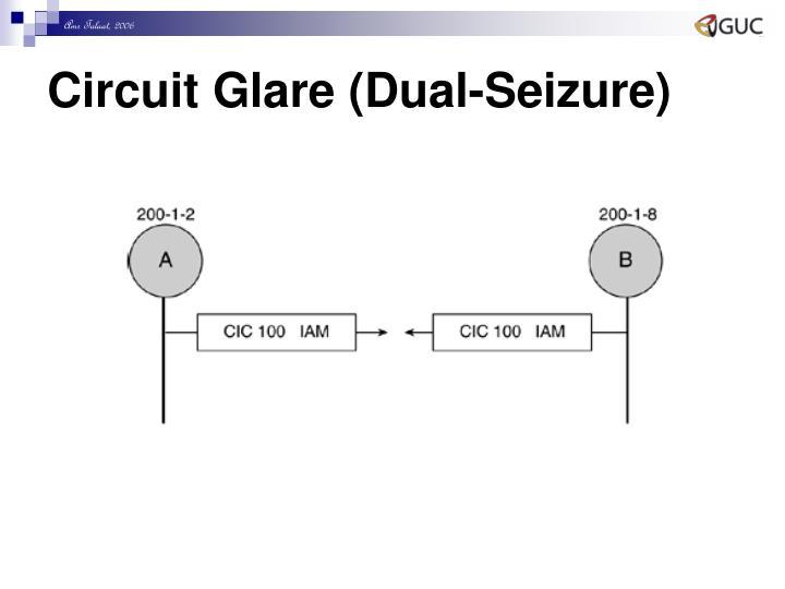 Circuit Glare (Dual-Seizure)