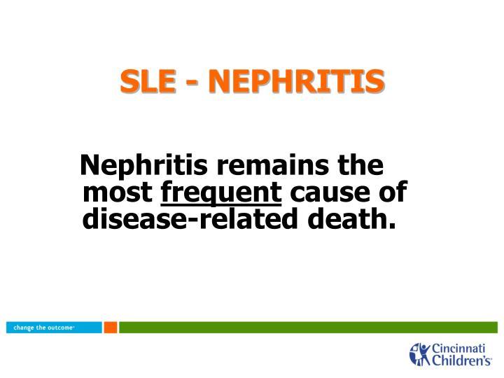 SLE - NEPHRITIS