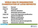 world health organization classification of lupus nephritis