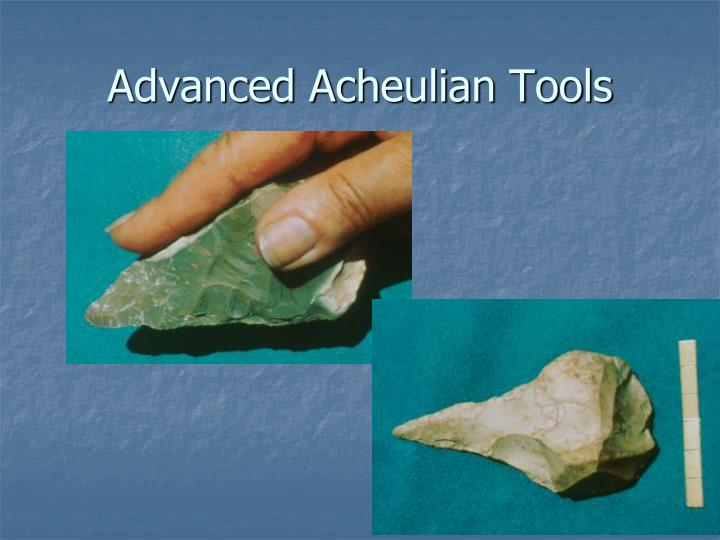 Advanced Acheulian Tools