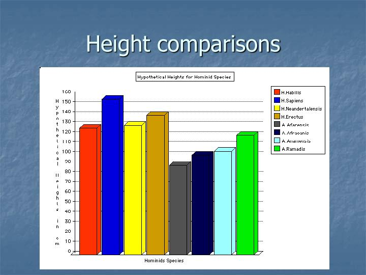Height comparisons